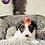 Thumbnail: Maggie - Female | 8-Weeks Old | Yorkiechon