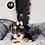 Thumbnail: Neena - Female | 8-Weeks Old | Yorkiechon