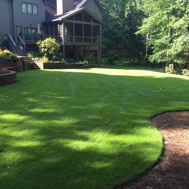 weed control and fertilizer with Zeon Zoysia