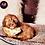 Thumbnail: Lance - Male | 9-Weeks Old | Shorkie Tzu