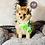 Thumbnail: Valentino - Male | 8-Weeks Old | Pomeranian