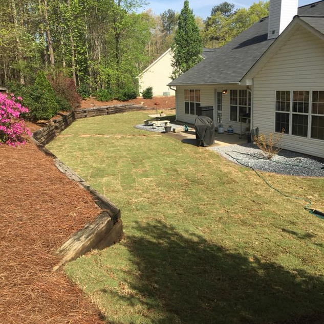 Lawn and Landscaping After