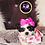 Thumbnail: Amelia - Female | 8-Weeks Old | Shih Tzu