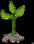 roots-clipart-plant-nutrient-9.png 1 sap