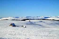 An Aubrac winter