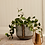 Thumbnail: Brass gardening tools
