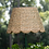 Thumbnail: Large Scalloped Seagrass Lampshade