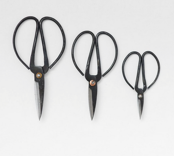 Herb scissors set of three