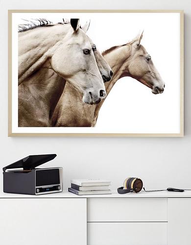 Horse Run framed artwork