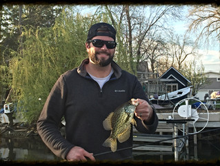 Trolling for Pre-Spawn Crappies: a Southern Technique for Northern Fish