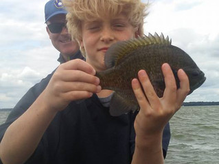 Madison, WI Fishing Report August 8, 2018