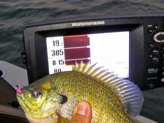 Madison Fishing Report 8/9/2016
