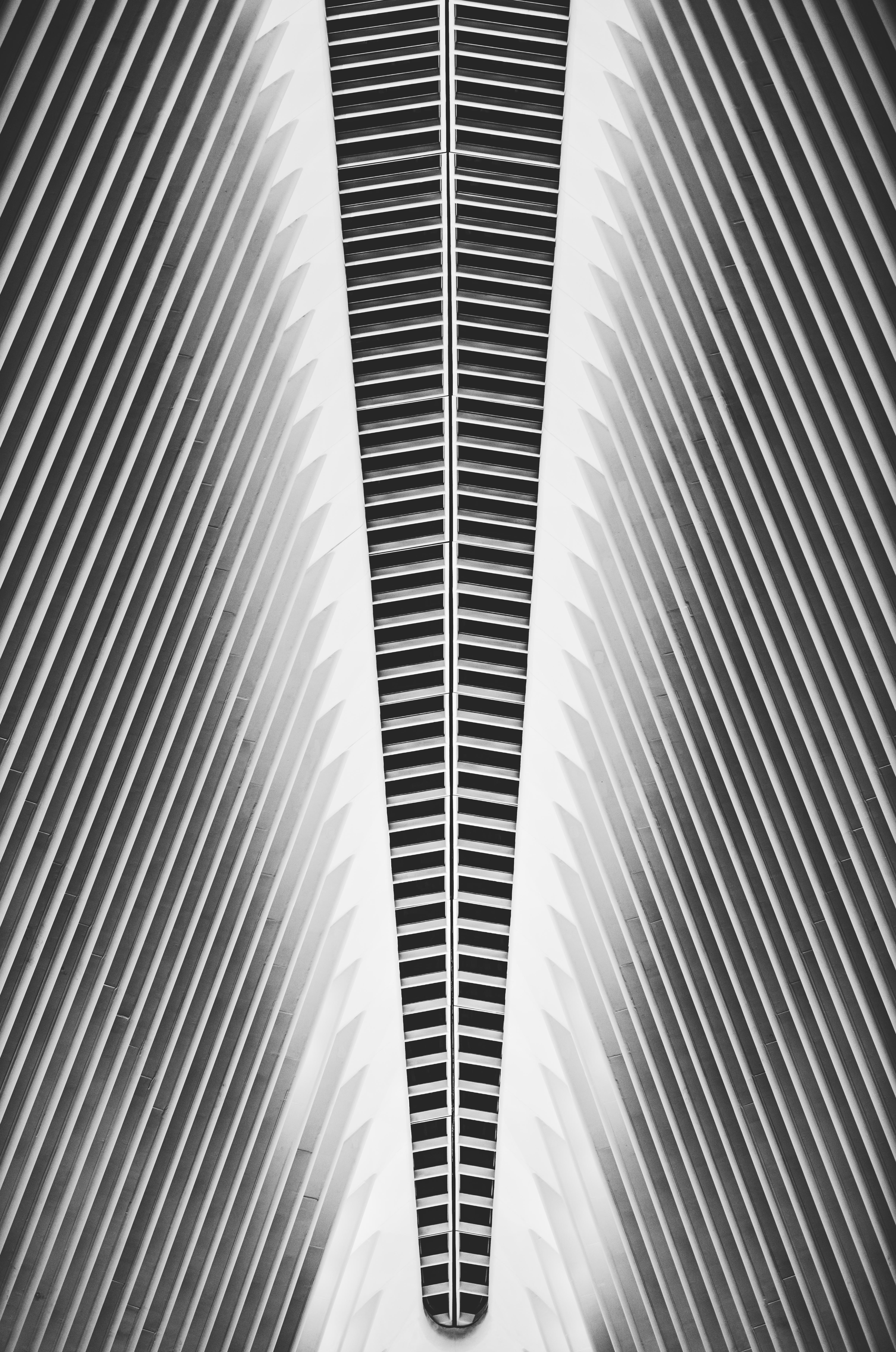 Cityscape 22