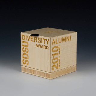 diversity_award_01.jpg