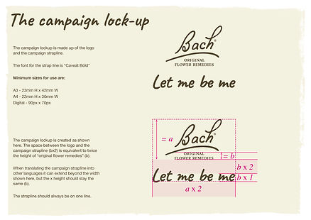 Bach campaign guidelines PDF_Page_13.jpg