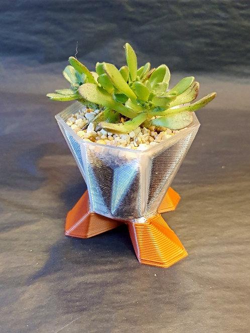 Mini geometric plant pot with succulent.