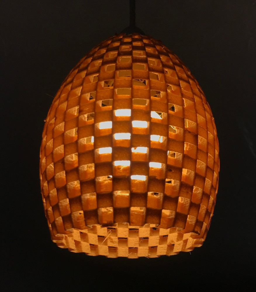 Biodegradable Lamp Shade