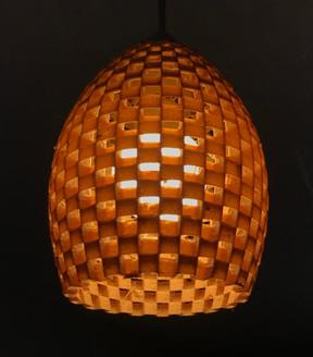 Biodegradable Lamp Shade