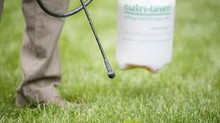 Weed Control: Now less expensive than ever..!