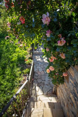 Entrada Casa 4
