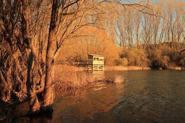 lago en otoño.jpg