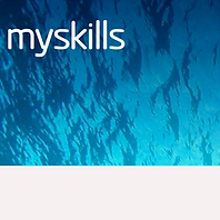 myskills.png
