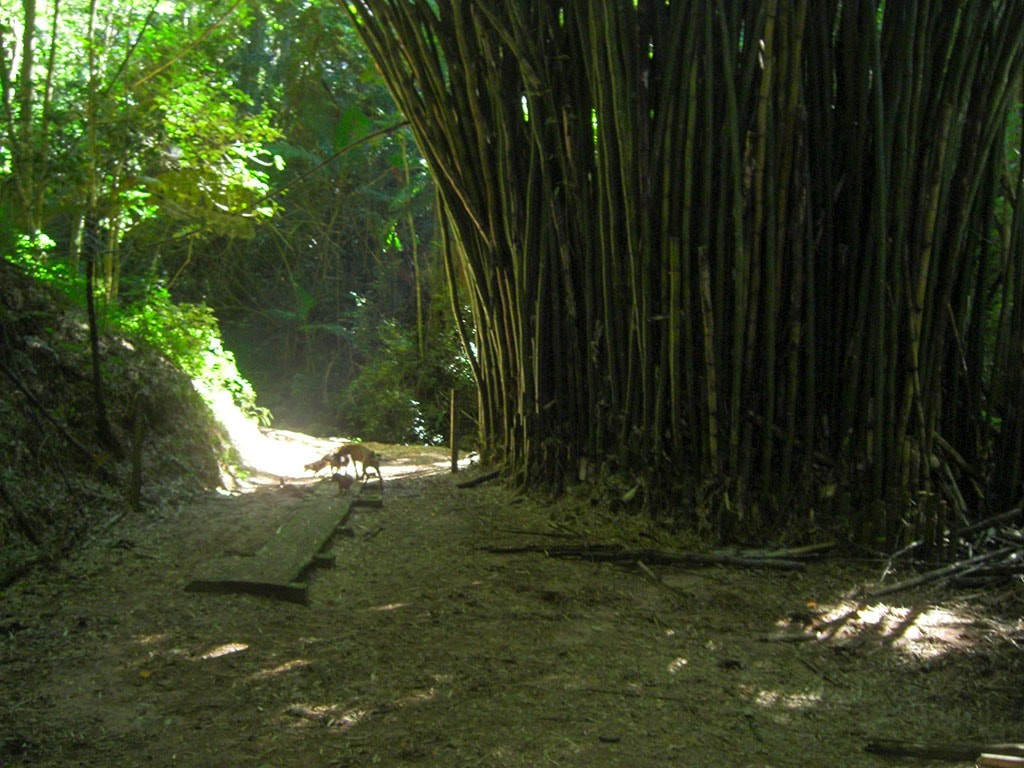 cachoeira-da-gruta-fazenda-hotel-vale-verde-4-1024x768
