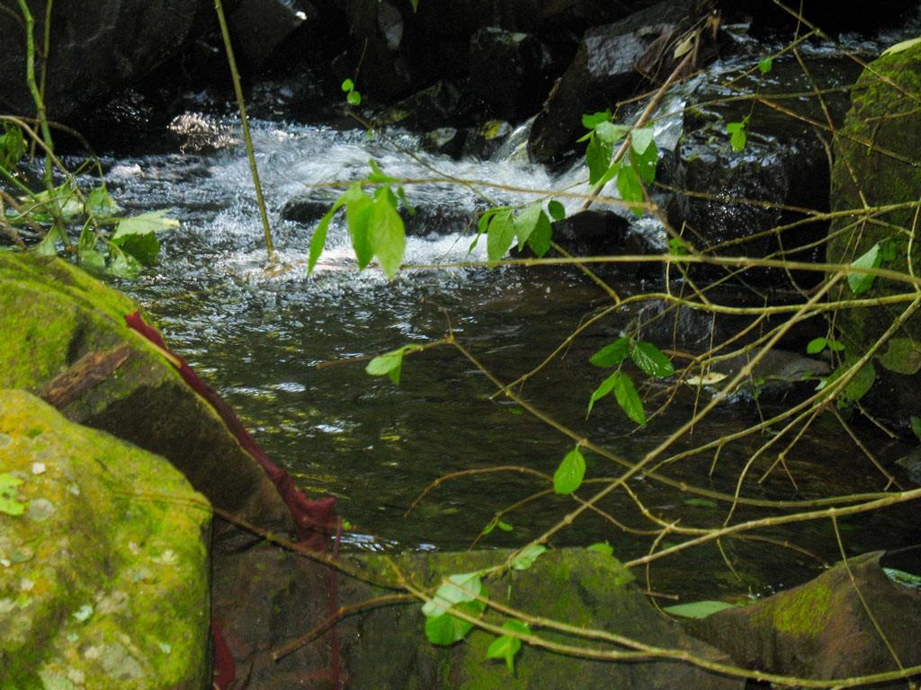 cachoeira-das-capivaras-fazenda-hotel-vale-verde-2-1024x768