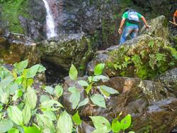 Cachoeira das Capivaras