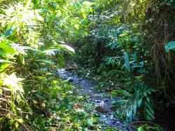 cachoeira-das-capivaras-fazenda-hotel-vale-verde-1-1024x768