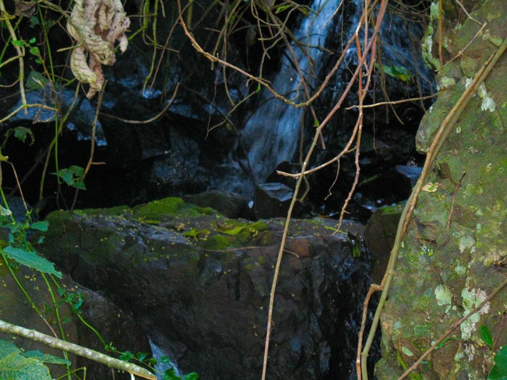 cachoeira-das-capivaras-fazenda-hotel-vale-verde-3-1024x768