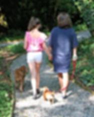 Woodland walking trails