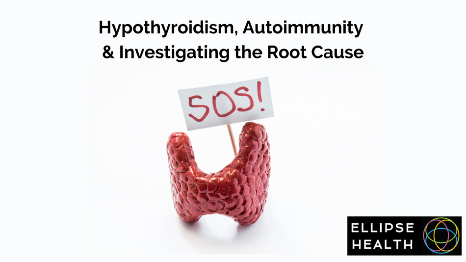 Hypothyroidism, Autoimmunity & Investigating the Root Cause