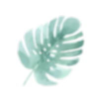 Tropical%20Leaves%204_edited.png