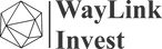 waylink invest logo-F.png