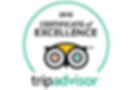 Tripadvisor_Logo-2.png