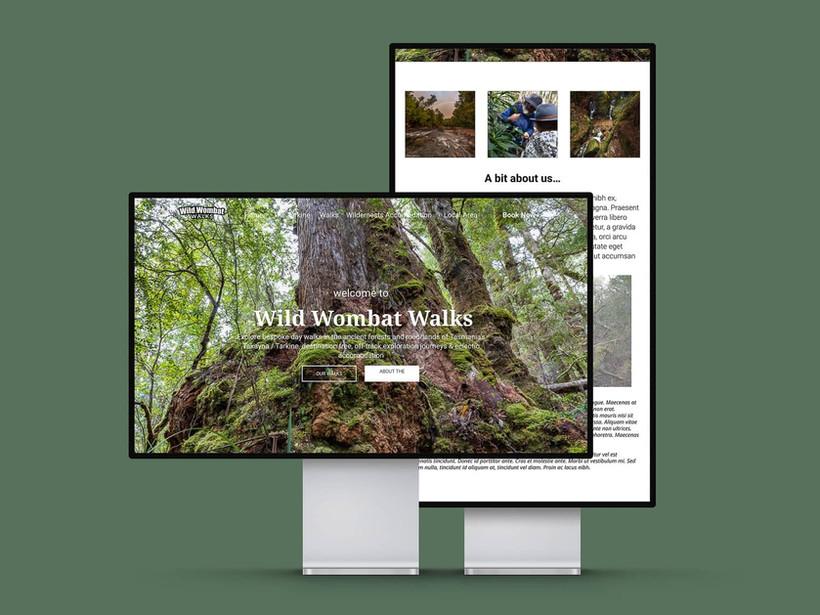 Wild Wombat Walks