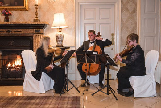 important weddng music perfect atmosphere log fire string trio waterford faithlegg hotel marriage