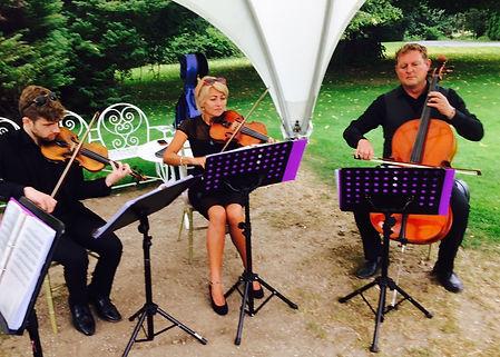 Quartet best music Springfort Hall county Cork garden drinks party wedding reception Irish wedding SuirStrings