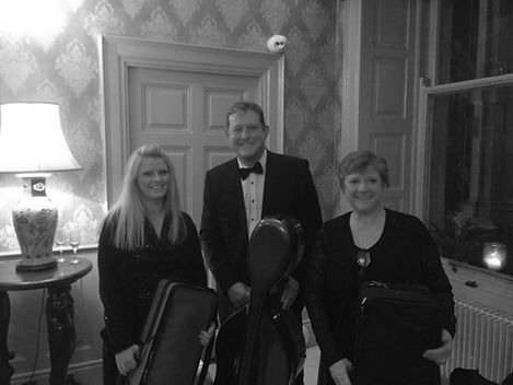 musicians waterford wedding music suirstrings.ie Faithlegg hotel party