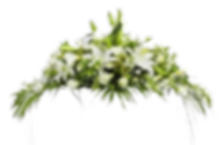 funeral-clipart-leave-4.png