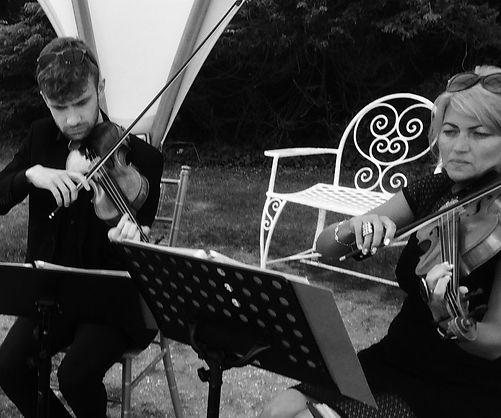 Quartet best music Springfort Hall county Cork garden drinks party wedding reception Irish wedding SuirStrings viola an violin with cello