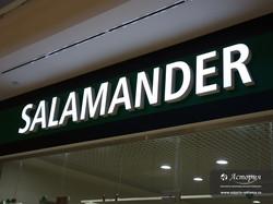 salamander-1