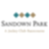 sandown-park-racecourse-logo.png