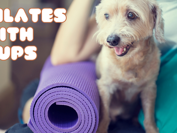 Pilates with Pups