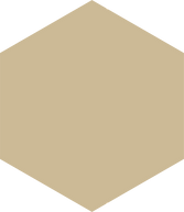hexagon - beige.png