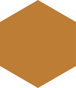 hexagon - oranje.png