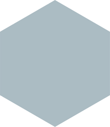 hexagon - lig blou - 30 transparent.png