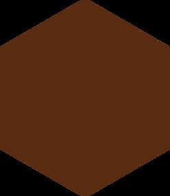 hexagon - bruin.png