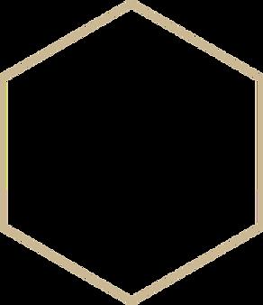hexagon%20-%20beige%20raam%20-%2050%20tr